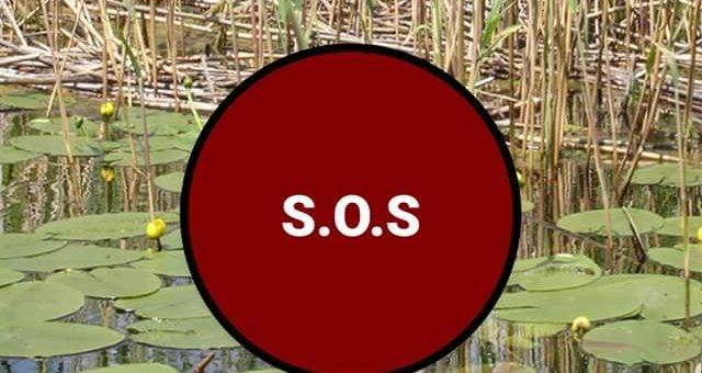 Premieră pentru pasionații de bărci și motoare Prima aplicație tip S.O.S. care îți poate salva viața!